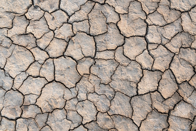 Drought cracking earth texture background