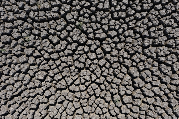 Drought deep cracked earth background lit by the sun