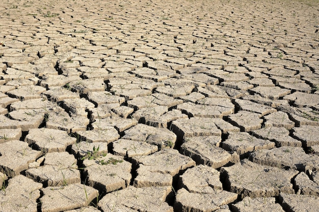 Drought. the dry bottom of the lake, the ground is covered with the texture of cracks . perspective view.