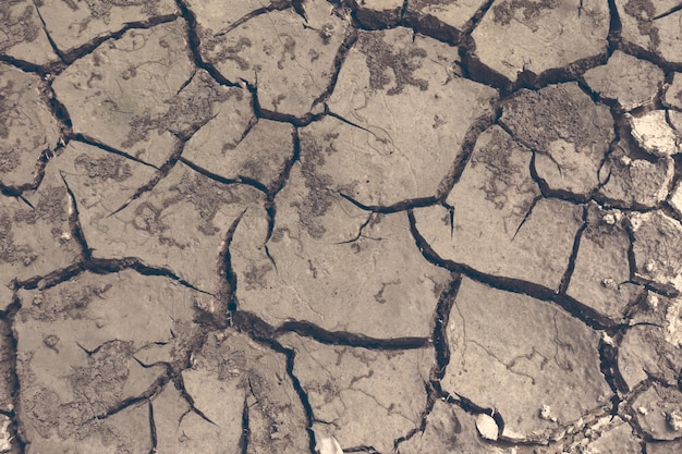 Drought, the ground cracks, no hot water, lack of moisture. dried and cracked ground, cracked surface, dry soil in arid areas.