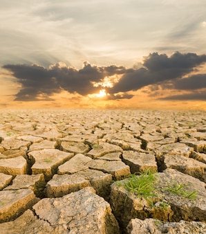 Засуха под вечерним закатом