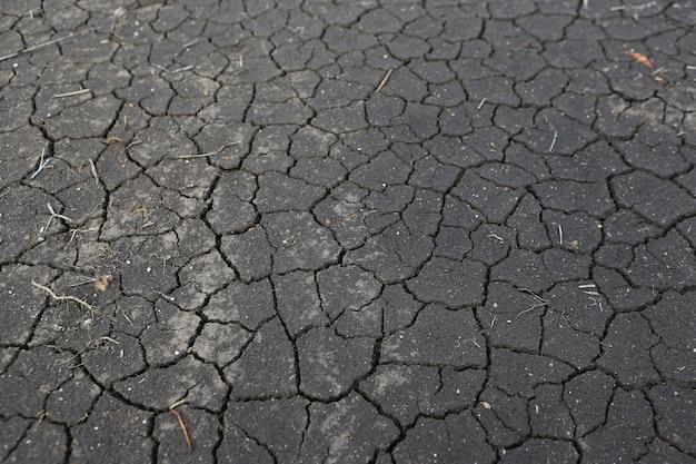 地面の干ばつ