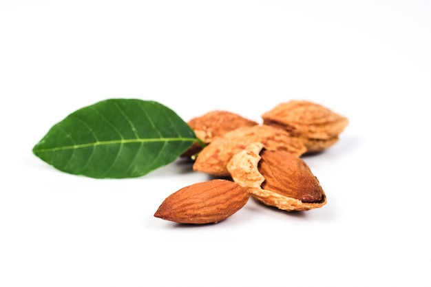 Dry almonds nuts with shell on white background