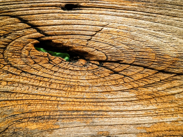 Dry ancient of outdoor wooden surface has damage and line by tempurature