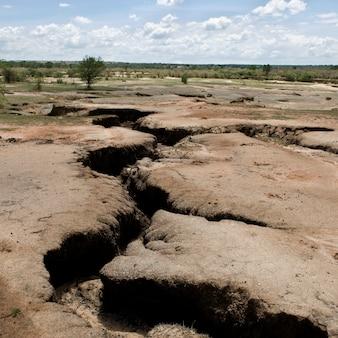 乾燥してひび割れたアフリカの風景、タンザニア、アフリカ