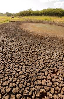 브라질 파라이바의 가뭄으로 건조하고 갈라진 땅. 기후 변화와 물 위기.