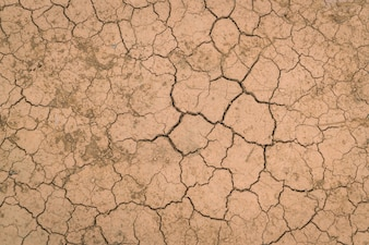 Dry and cracked ground texture .