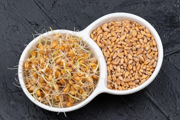 Сухие и проросшие зерна пшеницы в белой тарелке с колосьями пшеницы. органические зерна полезны для салатов, здоровой пищи. крупный план