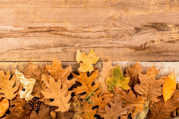 Dry autumn leaves on wooden background