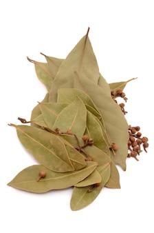 고립 된 흰색 표면에 고립 된 건조 베이 잎
