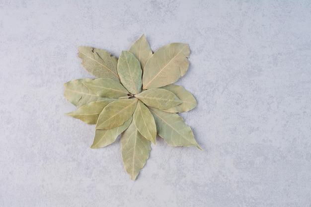 콘크리트 배경에 마른 베이 잎.