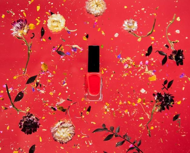 꽃과 절연 빨간색 배경에 빨간색 매니큐어와 벨리스 허브를 건조. 그림자없이