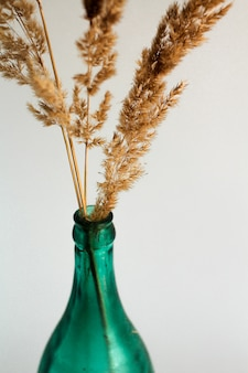 Dry branch in the transparent green bottle vase on a white background