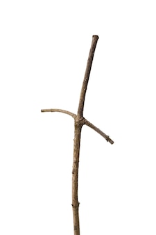 A dry branch with two branches resembling a cross, isolated on a pure white background.