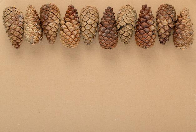 ブラウンパインコーンの背景、テクスチャまたはパターンを乾燥します。
