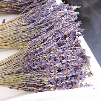 Dry bundles of lavender