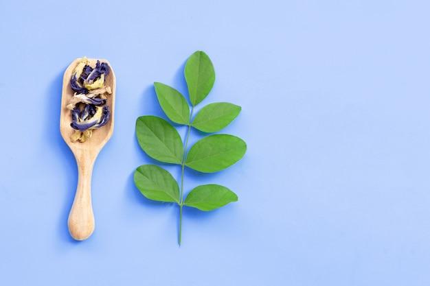 紫色の背景に緑の葉と蝶エンドウ豆の花を乾燥させます。