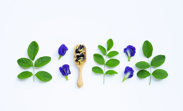 Dry butterfly pea flower with green leaves on white . top view