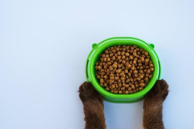 ドライキャットフード。猫の足は食べ物のボウルを保持します