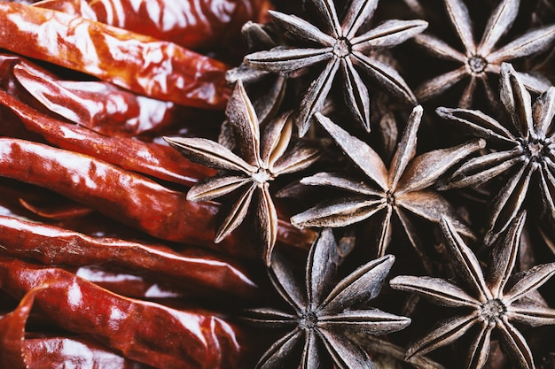 Dry chilli pepper and star aniseed close-up.