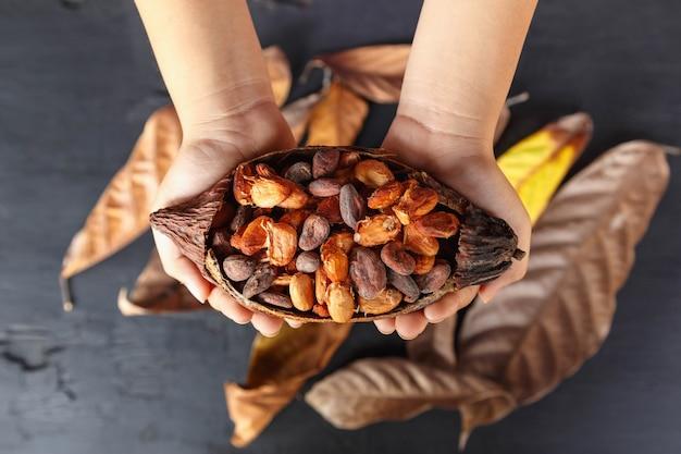 手持ちのカカオ豆を乾かす