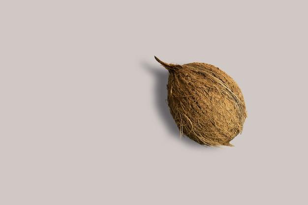 메뉴에 대 한 흰색 바탕에 건조 코코넛 과일. 기하학적 배경. 평면 평신도, 복사 공간, 평면도.