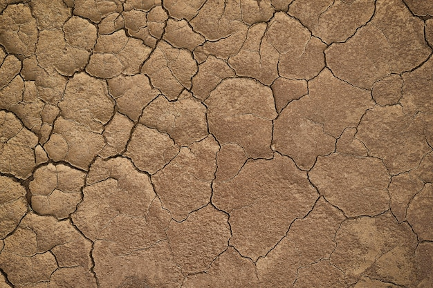 Dry cracked earth during in a rainy season because lack of rain shortage of water cracked soil texture background