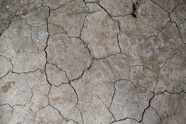 Dry cracked earth ground texture. no watering desert.