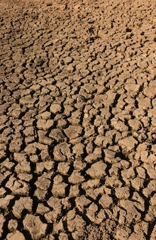 Dry and cracked ground caused by drought in paraiba, brazil. climate change and water crisis.