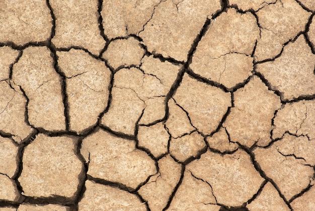 Dry cracked ground close up. background
