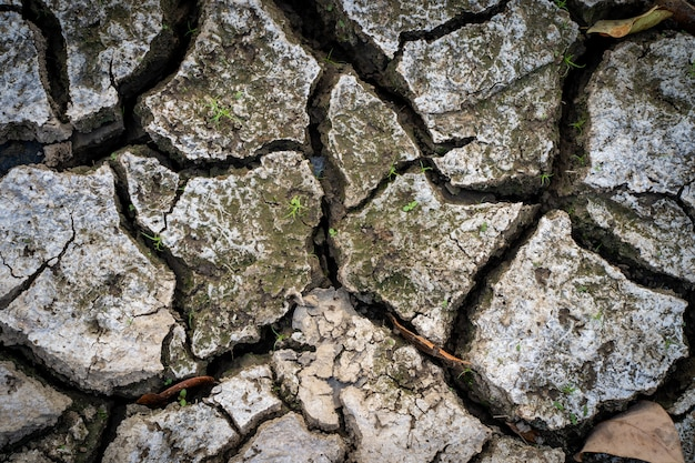 Dry cracked ground during summer heat.