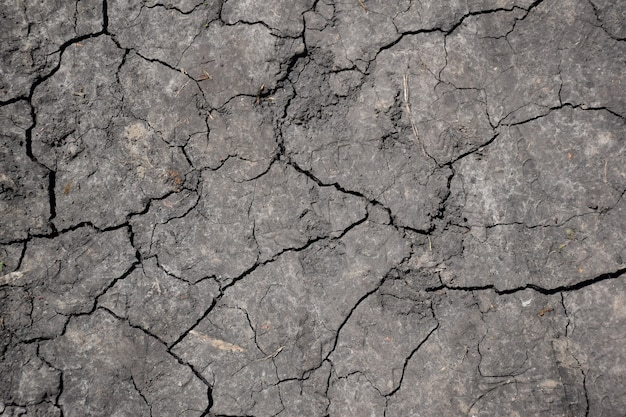 Dry, cracked lifeless earth all over the frame illuminated by a bright sun with many crevices