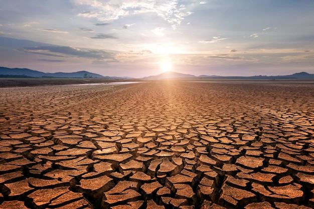 Dry cracks in the land, serious water shortages