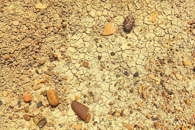 Dry earth with cracks and stones, earth cracked because of drought.a vintage background for design and creativity can be used as a cover for brochures or wallpapers Premium Photo