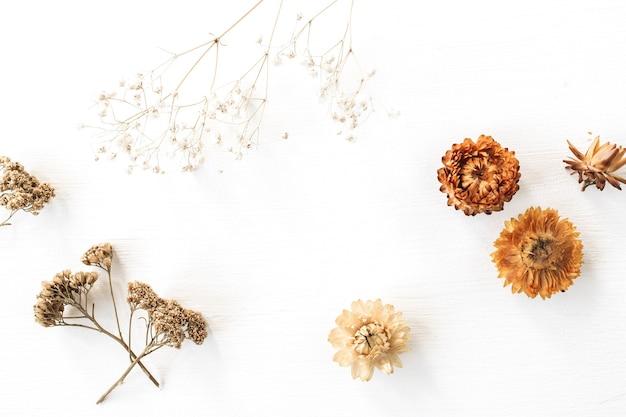 白の乾燥した花の枝とつぼみ