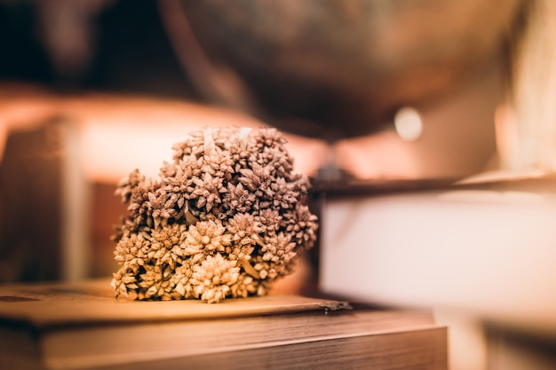 Dry flower on old books and blur world desk globe on wooden table