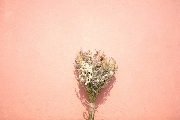 Dry flower with pink and pastel color background at sunny day.