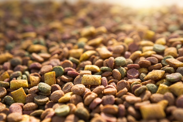Dry food for cats and dogs close - up-a background of round pellets and pillows with a soft filling-pate. healthy pet food, copyspace