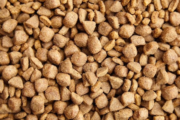 Dry food for dogs and cats. pet meal background