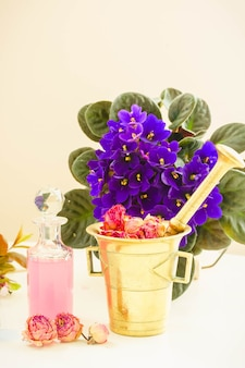 Dry and fresh flowers, mortar and vial of potion, herbal medicine and flower science