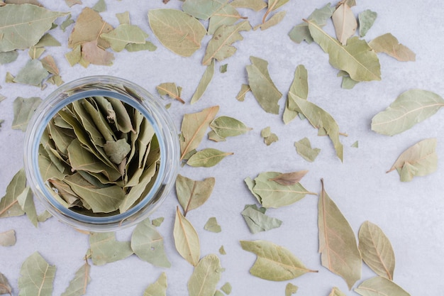Dry green bay leaves in a bowl on concrete background. high quality photo