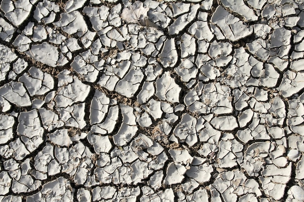 Сухая серая потрескавшаяся земля фоновой текстуры