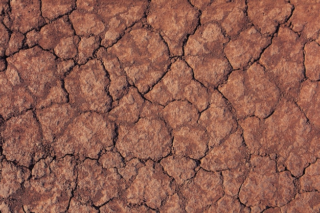Dry ground closeup grunge background