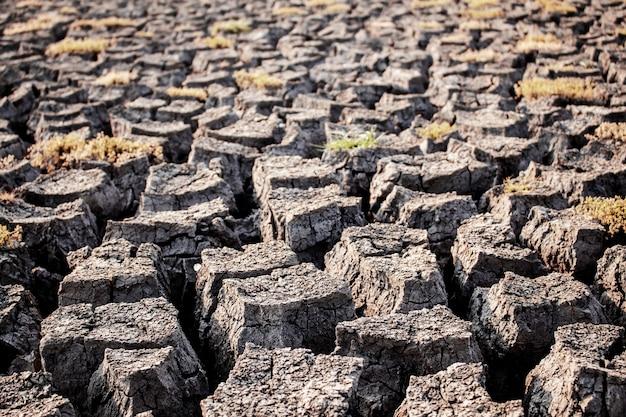 Сухая земля потрескалась от текстуры.