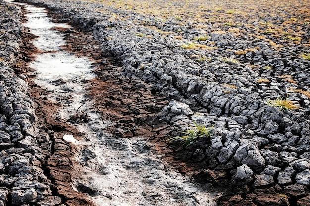 Dry ground of pond.