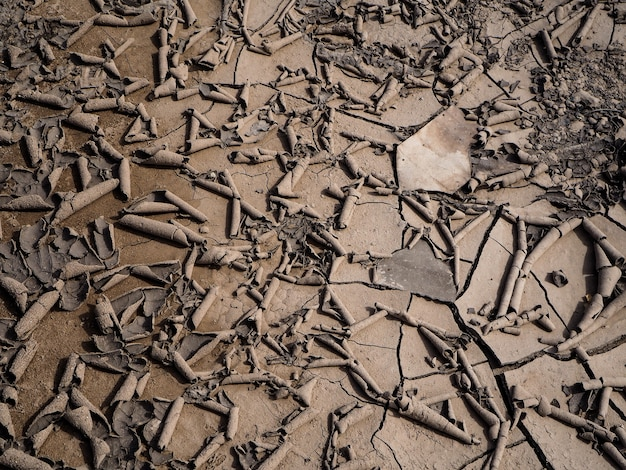 Dry ground presented the concept of drought.