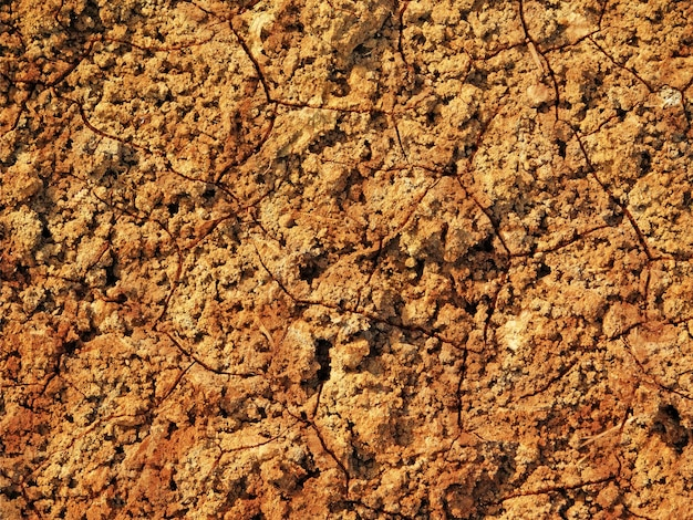 Текстура сухой земли на открытом воздухе