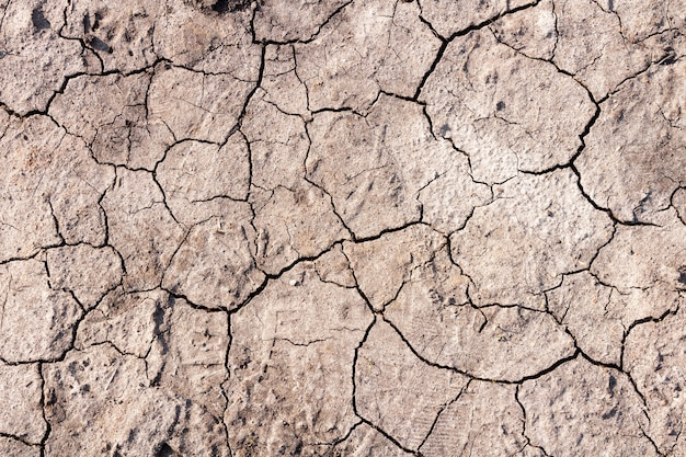 Dry ground with cracks. global warming concept.
