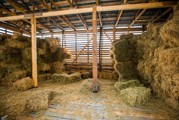 Dry hay stacks in rural wooden barn interior