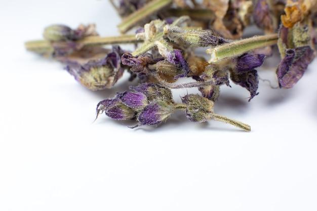 白い背景の上のお茶や治療のための乾燥ハーブの花。写真をクローズアップ。